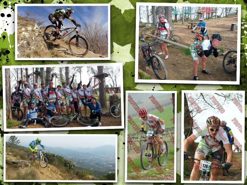 Collage 16mar14 Bikefan